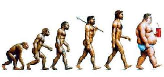 Obésité, infertilité... L'évolution inédite de l'espèce Homo sapiens
