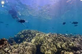 La recherche en milieu marin va bénéficier du programme d'investissements d'avenir