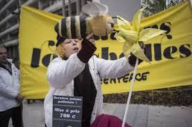 """Greenpeace au supermarché pour aider à """"sauver les abeilles"""""""
