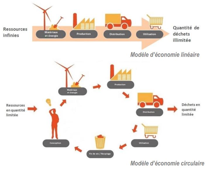 L'économie linéaire (traditionnelle) contre l'économie circulaire (durable)