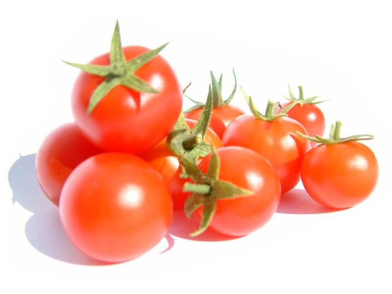 FW13, la tomate de demain qui ne pourrira jamais