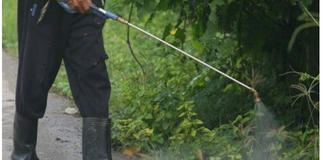 Agriculture: restreindre l'épandage des pesticides près des écoles