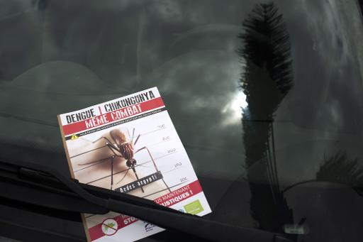 Antilles: le chikungunya pris en charge à 100%, l'épidémie grimpe à 115.000 cas