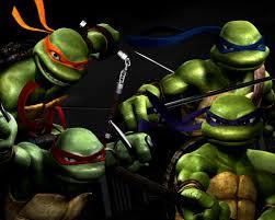 """Une association s'affole des conséquences du film """"Ninja Turtles"""" pour les tortues"""