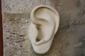 Trahi par son oreille, un cambrioleur condamné à un an ferme