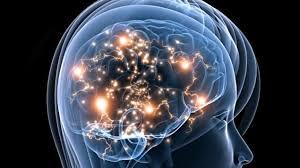 Autisme: un excès de connexions nerveuses potentiellement traitable