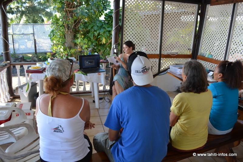 Manu relâche deux pétrels de Tahiti et recueille un pétrel géant