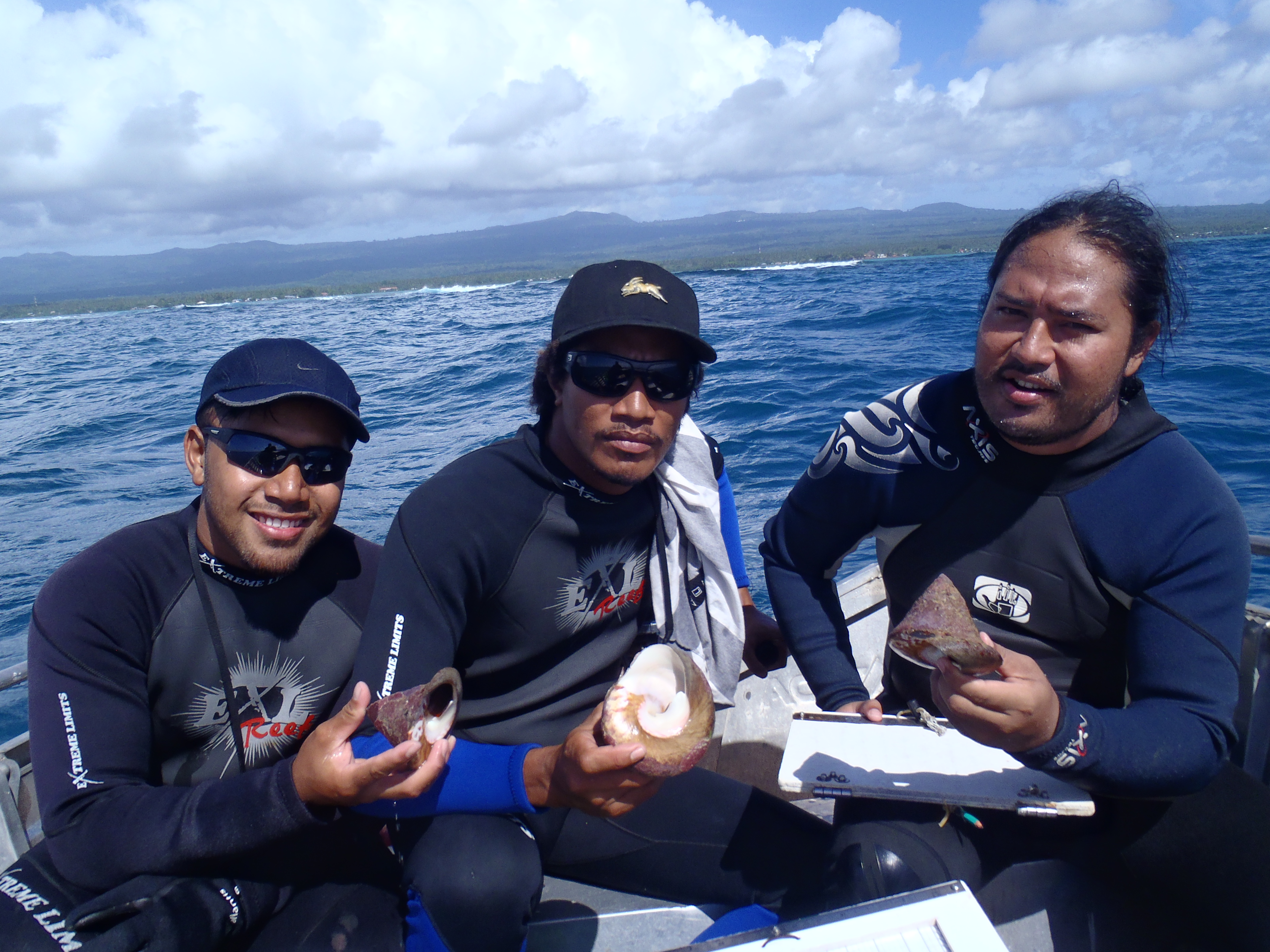 Le troca, ressource côtière d'avenir au Samoa