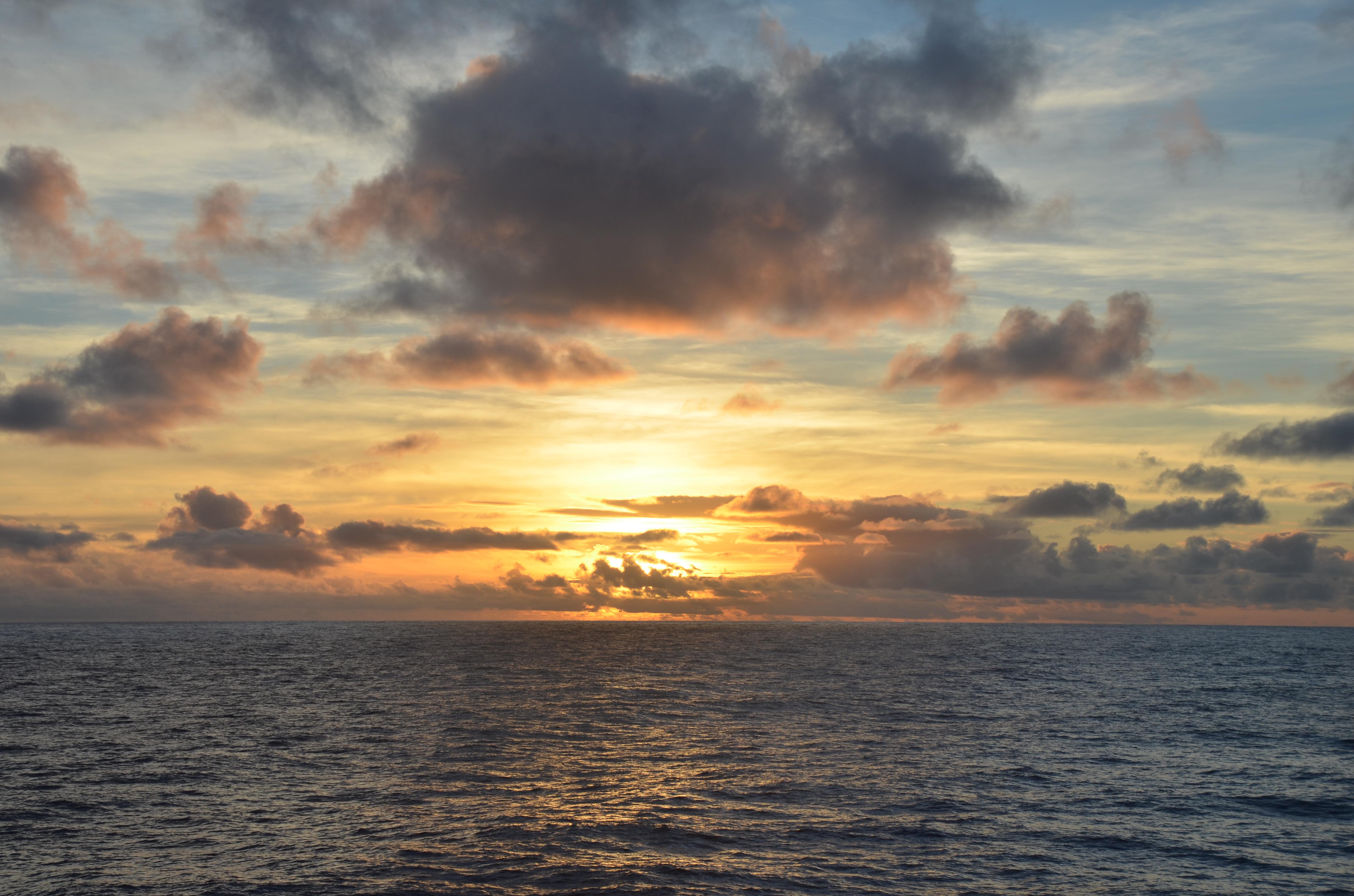 Aux Australes, le vœu d'une aire marine protégée