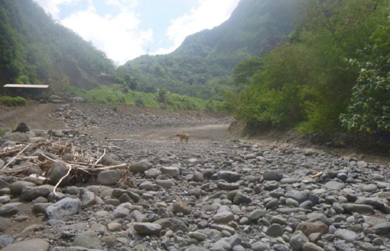 Le lit de la Punaruu, à sec. Grâce à la thèse de doctorat de Matthieu Aureau, la Punaru'u est aujourd'hui la rivière la plus équipée de Tahiti  pour suivre l'hydrologie du cours d'eau avec des appareils de mesure placés en divers sites de la vallée, particulièrement des sondes sur les forages (Photo Céline Advocat prise en décembre 2013).