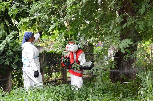 Le 30 mai 2014 autour du premier cas importé de chikungunya à Pirae, les traitements anti-moustiques autour du domicile de la personne atteinte avaient permis d'éviter la propagation du virus. Quatre mois plus tard, à la Presqu'île il a fallu attendre la déclaration officielle d'une quinzaine de cas pour que les actions de prévention se mettent en place.