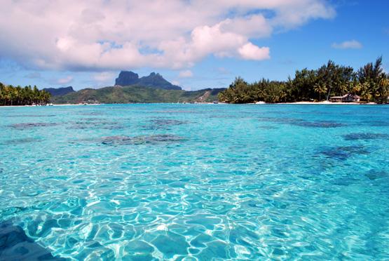 """La France et les pays des Caraïbes veulent promouvoir """"une croissance verte et bleue"""""""