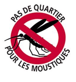 Chikungunya : 40 hospitalisations et plus de 3100 cas estimés en Polynésie