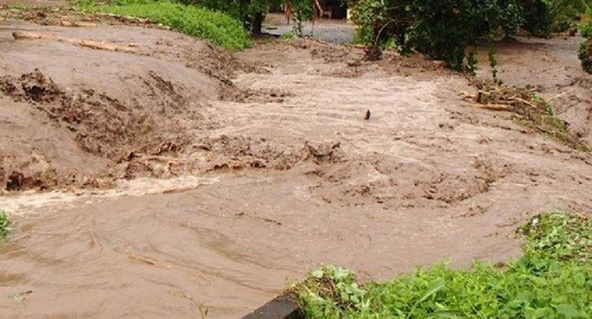 Lors des épisodes pluvieux, les eaux de ruissellement peuvent être chargées en bactéries : il faut particulièrement redouter la leptospirose dans ces cas-là et ne pas marcher pieds nus dans l'eau et la boue.