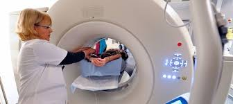 Le 1er bilan d'étape du 3e Plan cancer met l'accent sur les dépistages