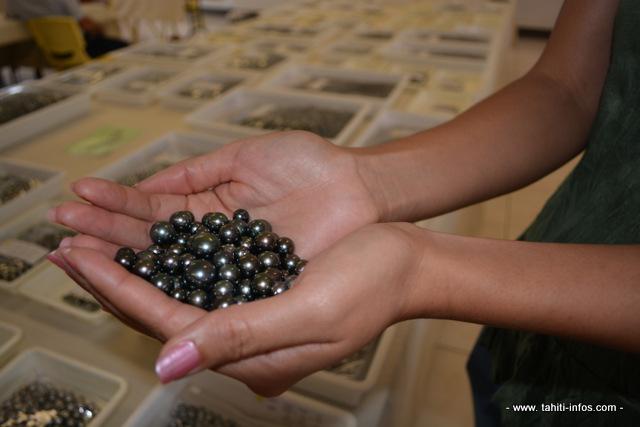 Après une belle année 2014 les exportations de perles ont décroché en janvier 2015. Mais il est encore trop tôt pour parler d'inversion de la tendance.