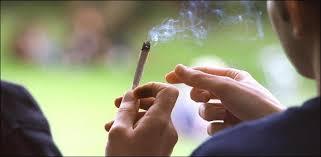 Pologne: la police interpelle un prêtre et deux enfants de choeur fumeurs de cannabis
