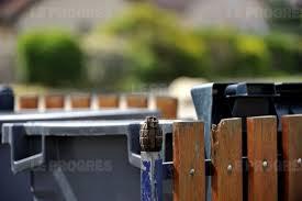 """Serbie: """"ne jetez pas les grenades à la poubelle"""", exhortent les autorités"""