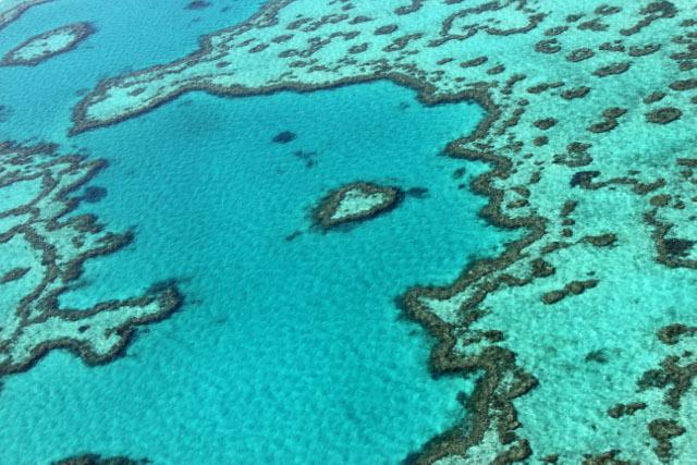 L'Australie présente un plan de préservation sur 35 ans de la Grande barrière de corail