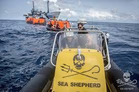 Sea Shepherd au secours de l'équipage d'un bateau soupçonné de pêche illégale