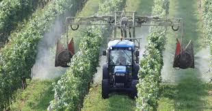 Décès d'un ouvrier viticole exposé aux pesticides: la justice ordonne une expertise médicale