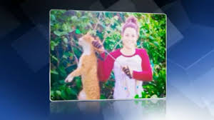 USA: une vétérinaire renvoyée pour avoir tué un chat d'une flèche