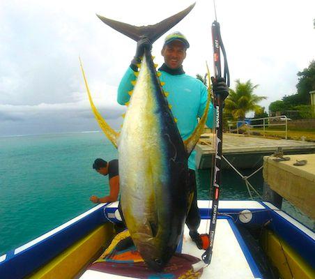 Un thon 'yellow fin', une prise exceptionelle, au vu de la force d'un tel poisson.