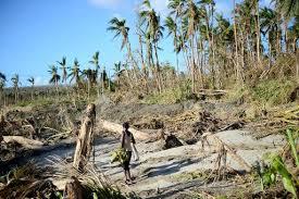 Préservation des forêts au service de la protection du climat : l'Océanie fait son bilan