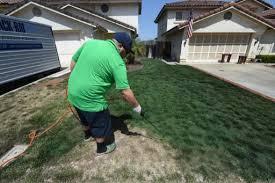 Peindre l'herbe, la nouvelle mode californienne pour garder des pelouses vertes