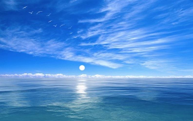 Protéger l'océan, activité rentable qui peut rapporter 900 millards de dollars (WWF)