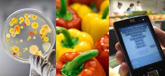 """Avec la """"foodtech"""", le petit plat n'est jamais très loin du smartphone"""