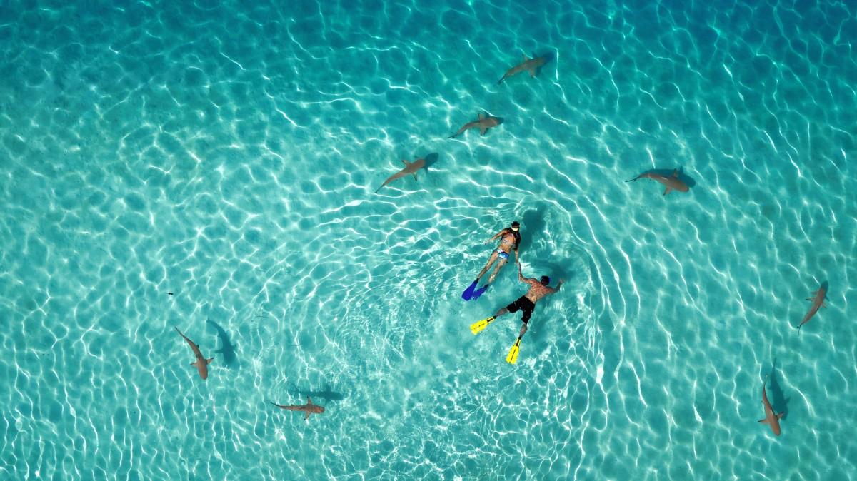 Photo : Tahiti Fly Shoot, en partenariat avec le photographe Tim McKenna