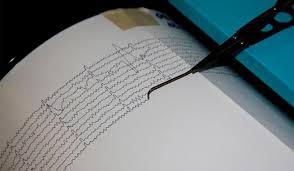 Fort séisme dans le sud-ouest du Japon, trois blessés selon les médias