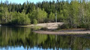 Accord entre le Québec et des Amérindiens pour protéger une forêt boréale