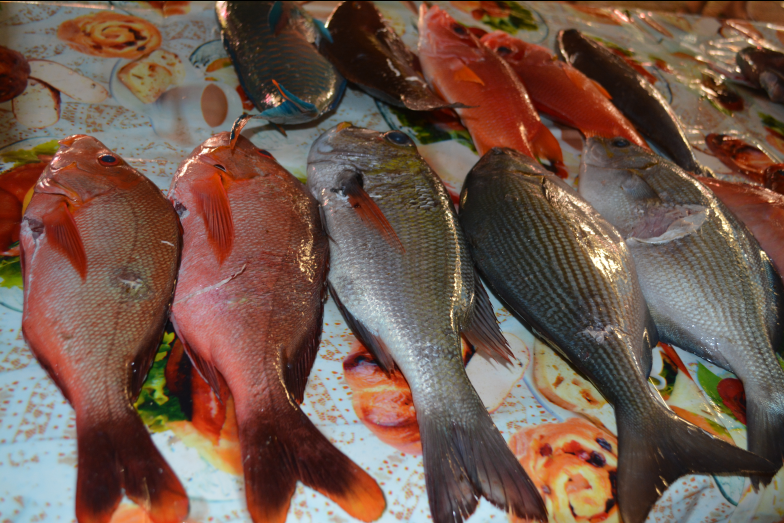 Mémorial Léon NANAI et 2ième et 3ième manche du championnat de Polynésie de pêche sous marine 2015