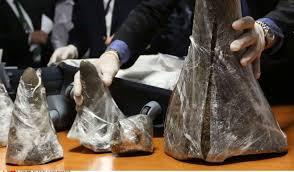 Vietnam: 700 kilos de cornes de rhinocéros et défenses d'éléphants saisies