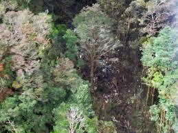 Indonésie: le mauvais temps empêche les secours d'atteindre le site du crash de l'avion