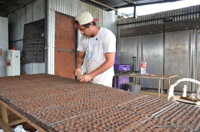Il faut former les salariés de l'exploitation à l'agriculture biologique