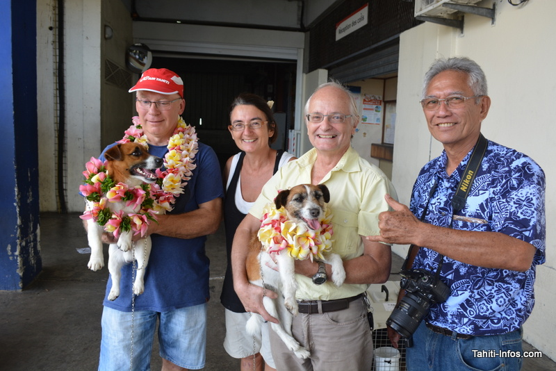 Guus Knopers et Philippe Raust qui portent Dora et Whisky, entourés de Jean Kapé et Caroline Blanvillain, vétérinaire de l'association.