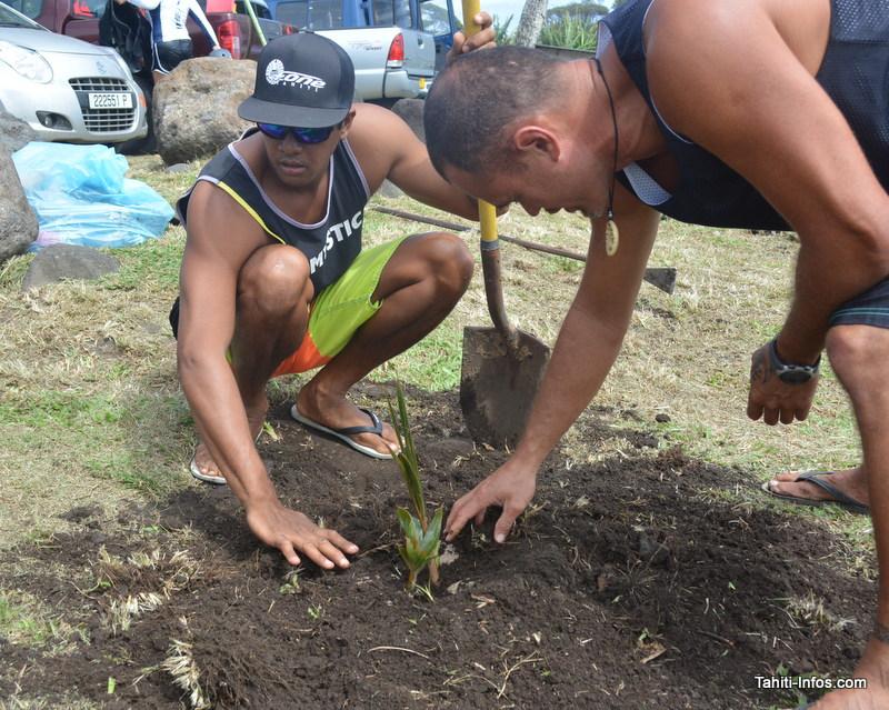 Trois cocotiers ont été plantés ensembles au bord de la plage. Tommy, à droite, est le président du club.