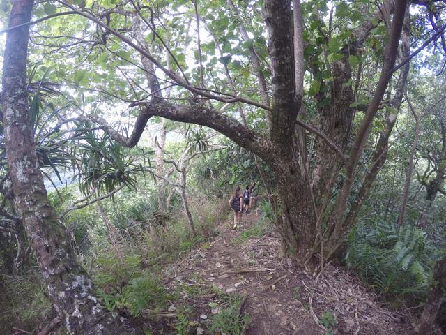 Un randonneur amateur décrit douze itinéraires sur son blog