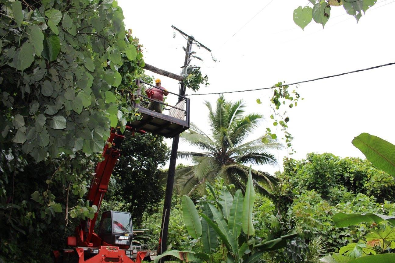 Teva i Uta: Un cocotier provoque une coupure d'électricité et une coupure d'eau