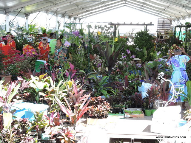Diverses variétés de plantes seront exposées. L'inauguration de la foire se tiendra demain matin à 10 heures.