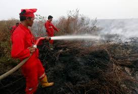Incendies: Singapour accuse l'Indonésie et ferme ses écoles