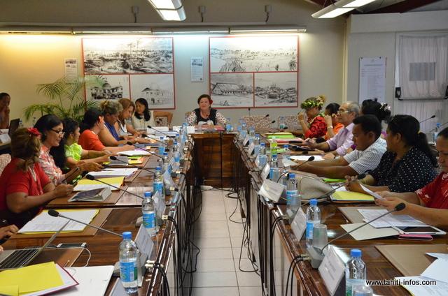 La réunion de la commission permanente le 20 janvier 2015 à l'Assemblée de Polynésie.