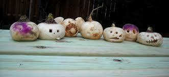 Halloween: English Heritage veut remplacer les citrouilles par des navets