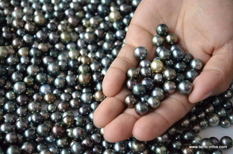 Promotion : 22 commerçants chinois découvrent la perle de Tahiti