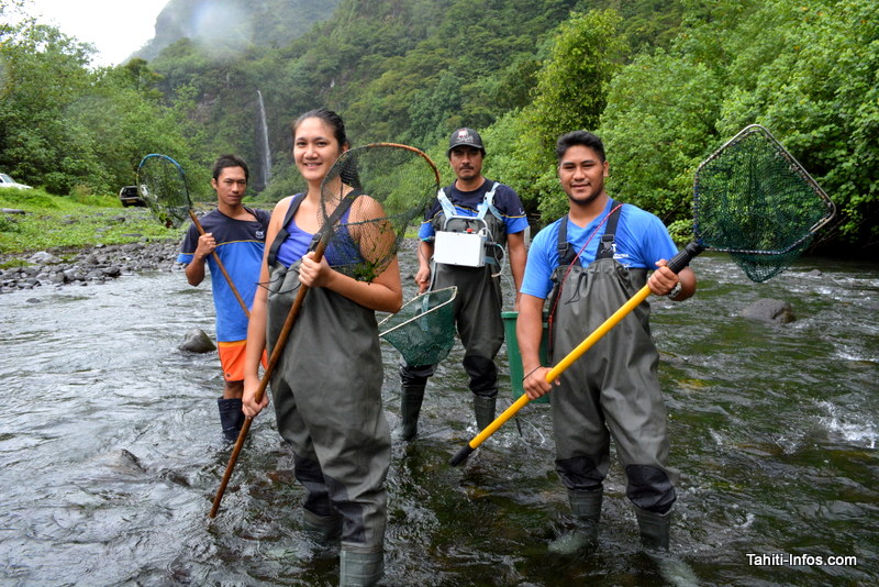 L'équipe de pêcheurs d'anguilles dirigée par Herehia Helme