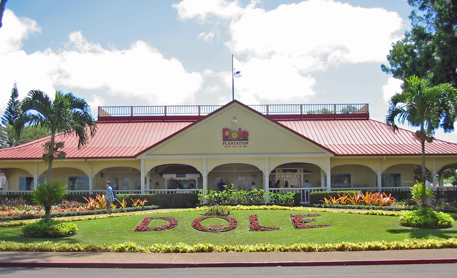 Au centre  de l'île de Oahu, un million de touristes visitent chaque année la Dole Plantation, une reconstitution très commerciale de ce que fut une vraie plantation (avec un petit train et le plus grand labyrinthe végétal du monde).