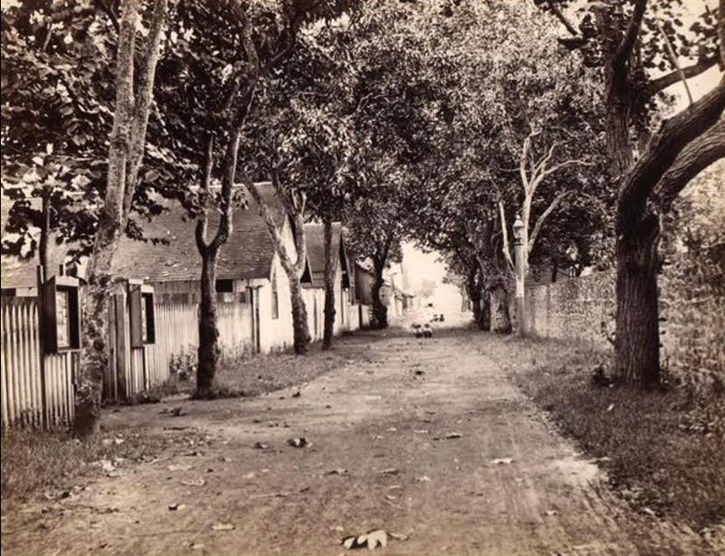 La rue de la Petite-Pologne vers 1890, un chemin de terre très campagnard.